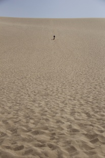 Bounding down the dunes.
